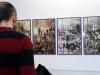 noticias2014-galeriaexpovalladolidmedios10